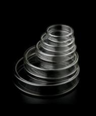 Placas de petri de vidro
