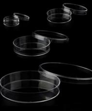 Placas para cultura celular