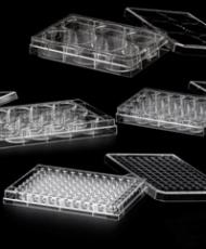 Microplacas para cultura celular